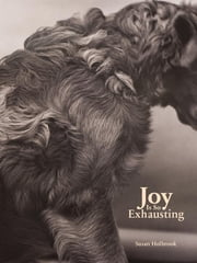 Joy Is So Exhausting ebook by Susan Holbrook