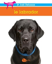 Le labrador ebook by Joël Dehasse
