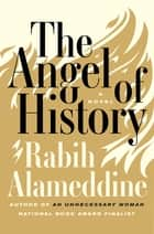 The Angel of History - A Novel ebook by Rabih Alameddine