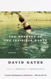 The Wonders of the Invisible World ebook by David Gates