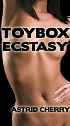 Toybox Ecstasy ebook by Astrid Cherry
