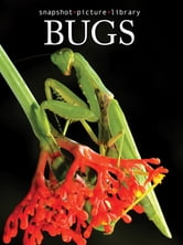 Bugs ebook by Snapshot Picture Library