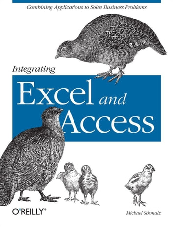 Integrating Excel and Access - Combining Applications to Solve Business Problems ebook by Michael Schmalz