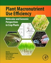 Plant Macronutrient Use Efficiency - Molecular and Genomic Perspectives in Crop Plants ebook by Mohammad Anwar Hossain, Takehiro Kamiya, David J. Burritt,...