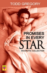 Promises in Every Star ebook by Todd Gregory