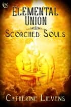 Elemental Union ebook by