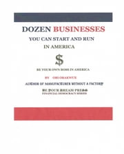 Dozen Businesses You Can Start and Run in America ebook by Obi Orakwue