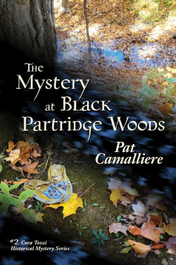 The Mystery at Black Partridge Woods ebook by Pat Camalliere