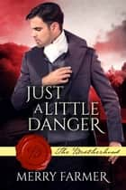 Just a Little Danger ebook by Merry Farmer