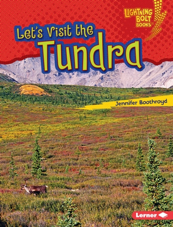 Let's Visit the Tundra audiobook by Jennifer Boothroyd