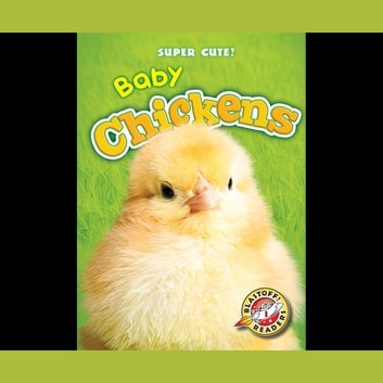 Baby Chickens audiobook by Megan Borgert-Spaniol