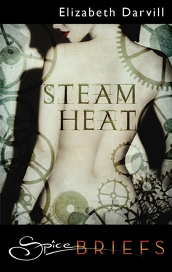 Steam Heat ebook by Elizabeth Darvill