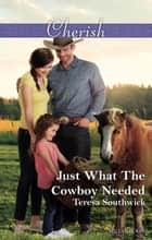 Just What The Cowboy Needed ebook by Teresa Southwick