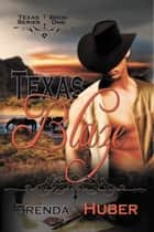 Texas Blaze ebook by Brenda  Huber