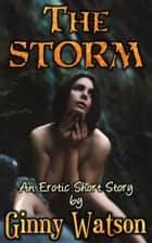The Storm ebook by Ginny Watson