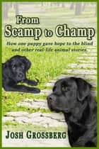 From Scamp to Champ ebook by Josh Grossberg