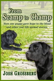 From Scamp to Champ - How one puppy gave hope to the blind and other real-life animal stories ebook by Josh Grossberg
