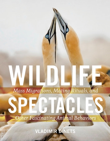 Wildlife Spectacles - Mass Migrations, Mating Rituals, and Other Fascinating Animal Behaviors ebook by Vladimir Dinets