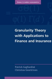 Granularity Theory with Applications to Finance and Insurance ebook by Patrick Gagliardini,Christian Gouriéroux