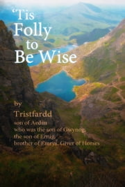 'Tis Folly To Be Wise ebook by John Arkison