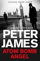 Atom Bomb Angel: A Max Flynn Novel 2 ebook by Peter James