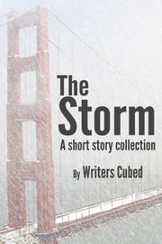 The Storm ebook by Thaddeus Burr,Jennifer Jenkins,Lois D. Brown