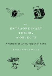 Extraordinary Theory of Objects - A Memoir of an Outsider in Paris ebook by Stephanie LaCava