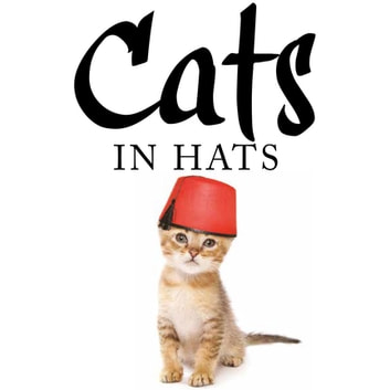 Cats in Hats ebook by Kat Scratching