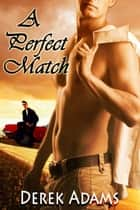 A Perfect Match ebook by Derek Adams