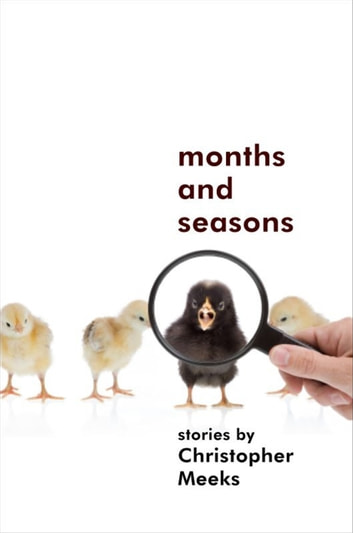 Months and Seasons 電子書 by Christopher Meeks