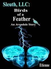 Sleuth, LLC: Birds of a Feather (an Avondale Story) ebook by Etienne