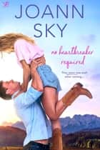 No Heartbreaker Required ebook by JoAnn Sky