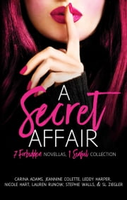 A Secret Affair ebook by SL Ziegler,Carina Adams,Jeannine Colette,Leddy Harper,Nicole Hart,Lauren Runow,Stephie Walls