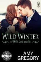 Wild Winter - A Wild Irish Novella ebook by Amy Gregory