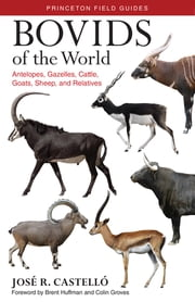 Bovids of the World - Antelopes, Gazelles, Cattle, Goats, Sheep, and Relatives ebook by José R Castelló,Brent Huffman,Colin Groves