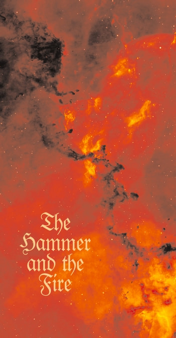 Hammer and the Fire ebook by Henry Marsh