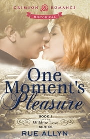 One Moment's Pleasure - Book 1 of the Wildfire Love series ebook by Rue Allyn