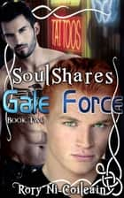 Gale Force - Book Two of the SoulShares Series ebook by Rory Ni Coileain