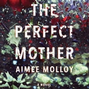 The Perfect Mother - A Novel audiobook by Aimee Molloy