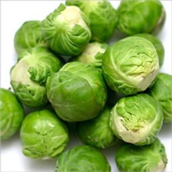 A Crash Course on How to Grow Brussels Sprouts ebook by Wendy Miles