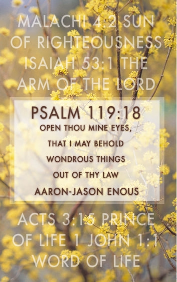 Psalm 119:18 Open thou mine eyes, that I may behold wondrous things out of thy law ebook by Aaron-Jason Enous
