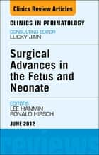 Innovations in Fetal and Neonatal Surgery, An Issue of Clinics in Perinatology ebook by Hanmin Lee,Ronald B. Hirschl