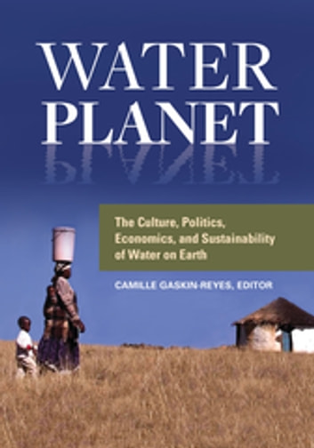 the political and economic importance of water This will be taken forward at the upcoming world economic forum on africa in cape town in june 2015, with the aim of accelerating public-private cooperation for water and sanitation to realize the sustainable development goals.