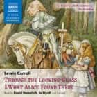 Through the Looking-Glass and What Alice Found There audiobook by Lewis Carroll
