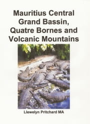 Mauritius Central Grand Bassin, Quatre Bornes and Volcanic Mountains ebook by Llewelyn Pritchard