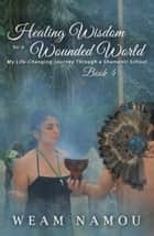 Healing Wisdom for a Wounded World: My Life-Changing Journey Through a Shamanic School (Book 4) ebook by Weam Namou