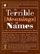 The Terrible Meanings of Names ebook by Justin Cord Hayes