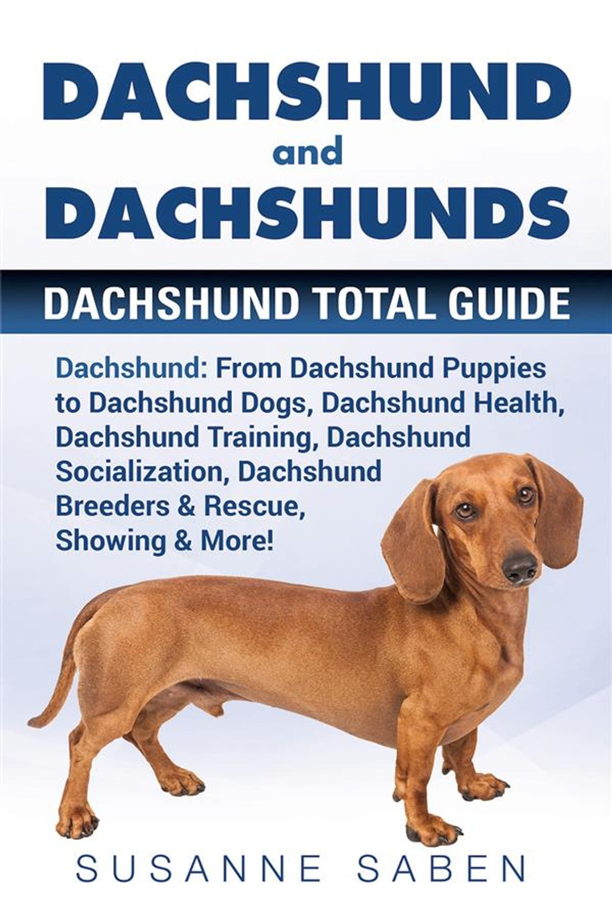 Dachshund And Dachshunds Ebook By Susanne Saben 9781911355809