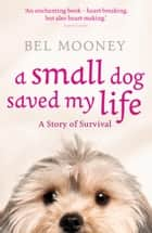 A Small Dog Saved My Life ebook by Bel Mooney