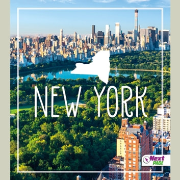 New York audiobook by Tyler Maine